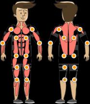 Muskelsystem ausgleichen